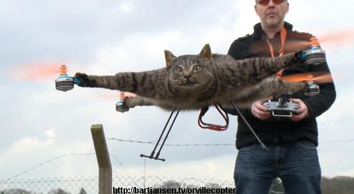 Der Orvillecopter, die Katzendrohne (Foto: http://bartjansen.tv)