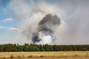 Ein Wald brennt aus der Mitte heraus. Die Waldbrandbekämpfung stellt sich als schwierig dar, da der Brandherd durch den vielen Rauch nicht sofort lokalisiert werden kann.